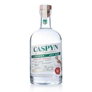 cornish caspyn midsummer dry gin